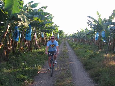 Steve biking in banana plantation