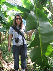 Stacy & banana leaf