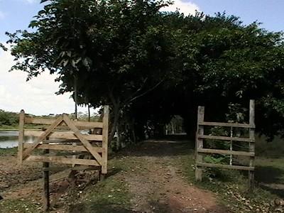 Cano Negro Gate