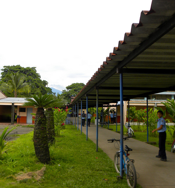 A tropical school yard...sloths and cell phones.