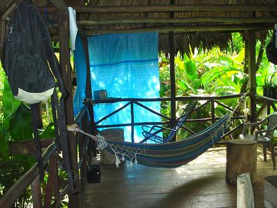 Rainforest Living room/Bedroom