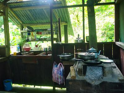 Rainforest kitchen