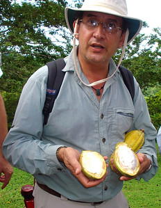 Don Julio once again demonstrates that much of the Rainforest IS edible