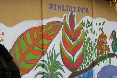 Library mural at Liceo de Pocóroa painted by the students.