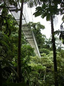 Hanging Bridges.....keith