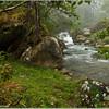 River scene, Costa Rica