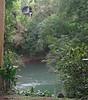 Near Intersection of STR and SOC Trails  - La Selva