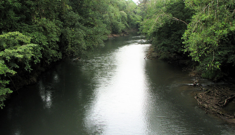 Upstream View of Rio Puerto Viejo  - La Selva