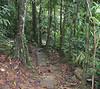 Nice View Of The River - La Selva Jungle Trek on SUR Trail
