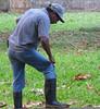 La Selva - One Of The Maintenance Men Sharpening His Machete