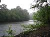 La Selva - View of Rio Sarapiqui From STR Trail In The Rain