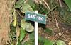 La Selva - Trail Markers