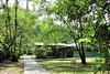 - La Selva Biological Station - Costa Rica
