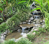 Finca Luna Nueva - Fountain and Waterfall Near Dining Area