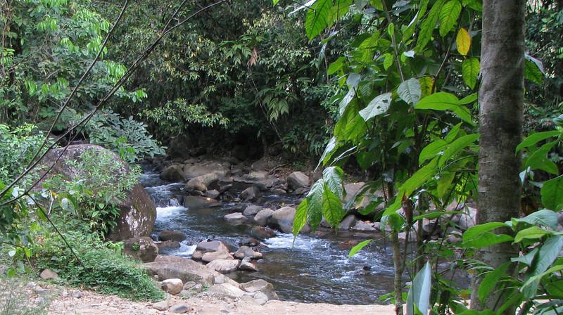 Finca Luna Nueva - Hike Down To The River
