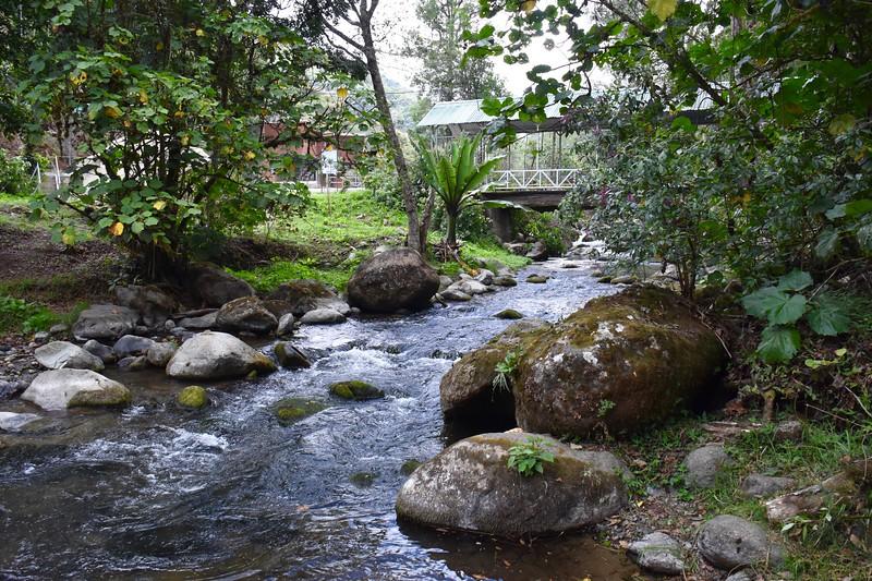 Suenos del Bosque, San Jose, Costa Rica