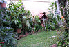 Homestay Enclosed Garden_7