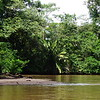 Tortuguero National Park, 7th January 2017, Rio Suerte
