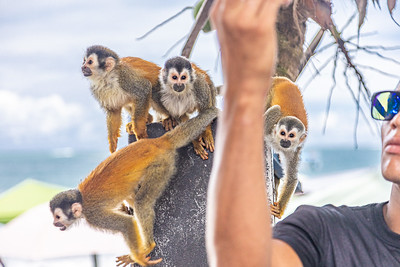 Selfie with Squirrel Monkeys