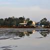 Delta del Ebro, Platja Eucaliptus Costas