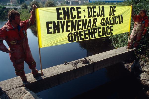 Accion en la papelera dee ENCE en Pontevedra