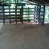 Barn for the 6 horses