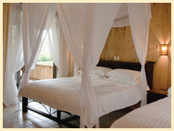 The Bungalows Each bungalow provides simplicity and elegant comfort through a luxurious, tastefully decorated environment.  Your own private terrace allows you to enjoy the peace and beauty of the surrounding ponds and lush vegetation.  The Services At Zamora Estate, Nature's Sanctuary meets Metropolitan Convenience, bringing you all the facilities and services of a luxury resort in a fully self-contained private estate.  Villas: (4, 1st Stage): Twenty lavish bedroom suites with private en-suite bathrooms  RATES: Private Bungalow High Season: (November to May) $145 + 13% taxes Low Season: (June to October) $125 + 13% taxes  Includes - King & Single bed or 2 Queen beds - Private bathroom - Air Conditioning - Gourmet breakfast (can even be delivered to your bungalow!!!) - Internet WiFi - Hair dryer - Safety deposit box - Television - Telephone (free calls to US and Canada) - Mini-Bar - Access to uncommon nature in an urban setting  Breakfast: Gourmet Breakfast delivered to your suite every morning   PROPERTY: Living Rooms: 3 grand living and dining areas  Pool: A large natural spring fed swimming pool  Spa: (2nd Stage): An outstanding, professionally-serviced spa  Dining: Gourmet dining with cooking classes available-  Bar/Restaurant: (2nd Stage): Poolside Rancho-style bar and light dining  Library/DVDs/Games: A library of books, DVD's and board games  Internet: High Speed WiFi internet access throughout the estate  @@@@@@@@@@@@@  Zamora Estates Inn  Santa Ana, Costa Rica  http://Facebook.com/pages/Zamora-Estate/47588082987  http://ZamoraEstate.com  info@ZamoraEstate.com  From the U.S. - 1-603-556-4300 Costa Rica  (506) 2-203-8225  SPEAK WITH ANA (& tell her Vicki with the Living Life in Costa Rica blog Connected you) .