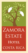 "Zamora Estates Inn <br /> Santa Ana, Costa Rica<br /> <br />  <a href=""http://Facebook.com/pages/Zamora-Estate/47588082987"">http://Facebook.com/pages/Zamora-Estate/47588082987</a> <br />  <a href=""http://ZamoraEstate.com"">http://ZamoraEstate.com</a><br /> <br /> info@ZamoraEstate.com<br /> <br /> From the U.S. - 1-603-556-4300<br /> Costa Rica  (506) 2-203-8225<br /> <br /> SPEAK WITH ANA<br /> (& tell her Vicki with the Living Life in Costa Rica blog Connected you)"