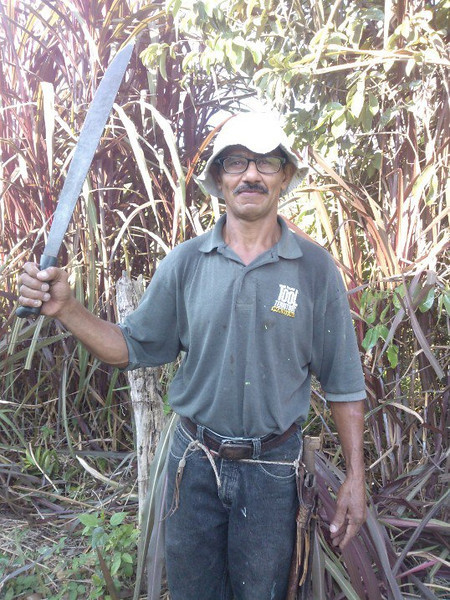 """Costa Rican """"Tico"""" version of a Mower or Weed Whacker!"""