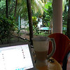 Sept. 29, '11  -  Having my morning Smoothie (papaya, pineapple/pina & banana) & checking Facebook on the patio on a rainy morning in Paradise!!  <br /> <br /> The body is in some pain because the last few days I've been doing 30-60 minutes of Water Aerobics in the pool!  Muscles are getting pushed that haven't been used in AWHILE!!!!  To bed by 11pm (after a tasty concoction of chicken in a sauce of extra virgin olive oil, lemon, basil, pepper & LOTS of garlic!!  & 1/2 a glass of wine!!  [cheap date - what can I say - 1/2 a glass of wine & I'm out like a log!!!]) & up at 5am!!! (no time to sleep!!  I'll sleep in my next life!!! TOO MANY things to do in this one!!)