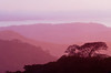 Sunset views of layered mountains and cloud forests near Monteverde, Costa Rica, Central America.