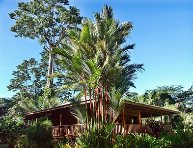 costa-rica-cabin