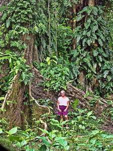 jungle-tree-woman