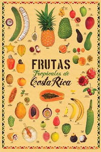 "POSTER from http://ZonaTropical.net Frutas tropicales de Costa Rica  •  (Tropical Fruits of Costa Rica) 22.2"" X 33.4""  •  56.39cm X 84.84cm Costa Rica is home to an extraordinary variety of  tropical fruits.  This poster includes 38 exotic and native species, with English, Spanish, and scientific names listed. U.S. Retail: $15.00"