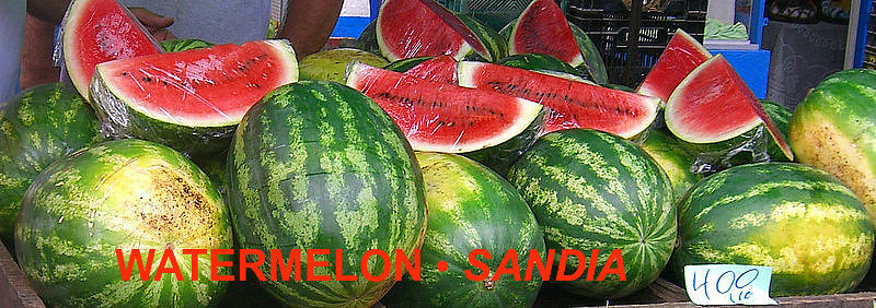 SANDIA •WATERMELON HOW TO PICK:  I've heard you tap on it with a full flat hand & sound for something hallow.
