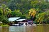 A remote jungle camp and home near Tortuguero National Park, Costa Rica, Central America.