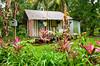 A modest home in Tortuguero, Costa Rica, Central America.