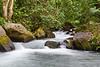 Mountain stream at La Carolina Lodge