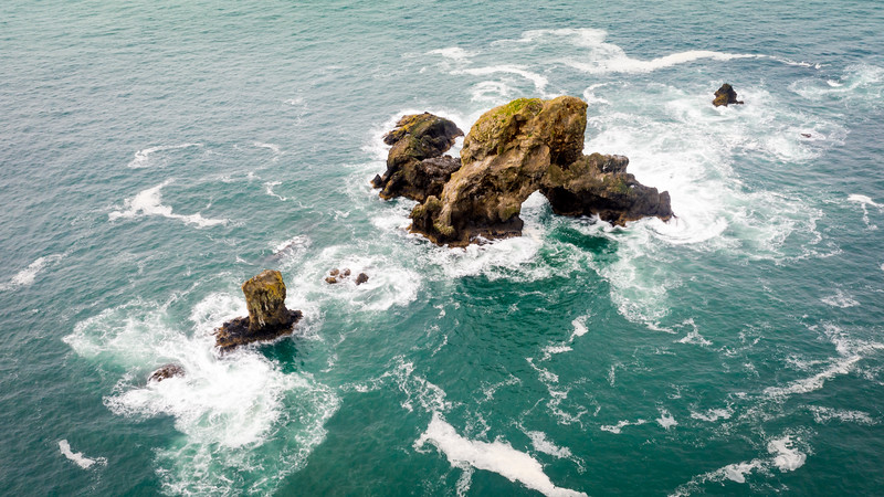 Sea Lion Rock