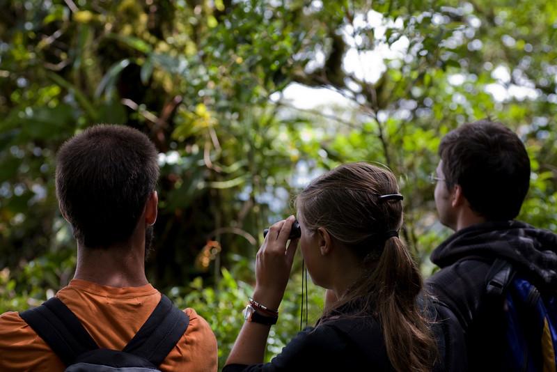 Reserva Santa Elena<br /> Monteverde