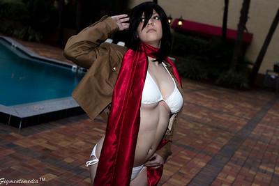 Alice Infinity - Mikasa