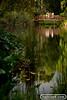 creek-120411-0180