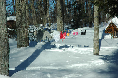A practical joke played by the neighbours.  This is what we saw when we first got to the cottage.