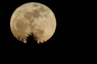 Moon 19-Mar-2011