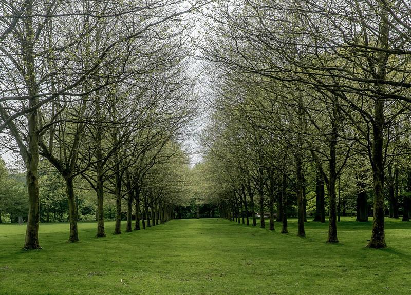 Avenue, Cottesbrooke Hall, Northamptonshire