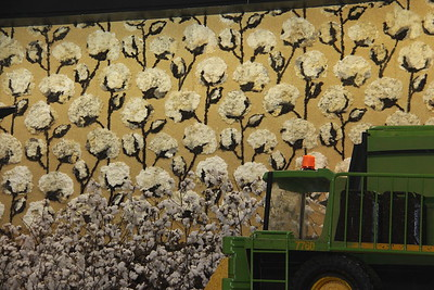 Sydney Royal Easter Show Southern District exhibit featuring cotton