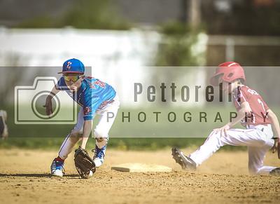 Cougars Baseball Action