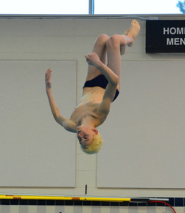 Angelo Iapalucci took first in boys diving for North.