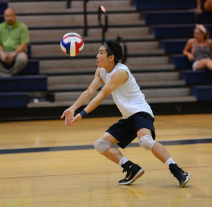 Grant Shieh (4) lines up a dig shot.