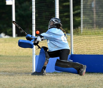 Sabrina Masone (#00) attempts to block penalty shot.